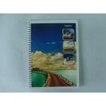 Caderno Universitário 01x1 096fls