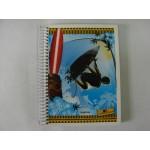 Caderno Universitário 12x1 240fls